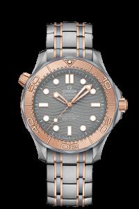 210.60.42.20.99.001 - Omega Seamaster
